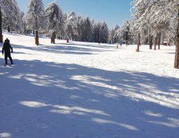 סקי בהרי הטרודוס